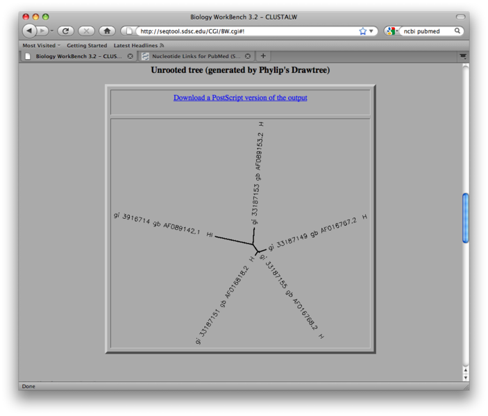 File:Unrooted Tree Diagram.png