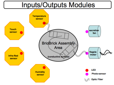 Hands on BioBrick IO modules