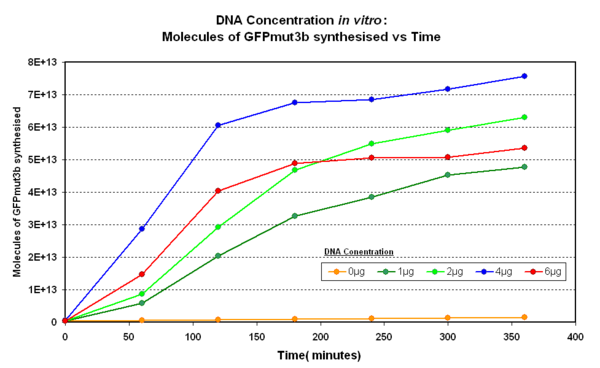 Fig.1.1:DNA Concentration in vitro - The DNA concentration of pTet-LuxR-pLux-GFPmut3b in vitro. The fluorescence was measured adn converted into molecules of GFPmut3b in vitro using our calibration curve.