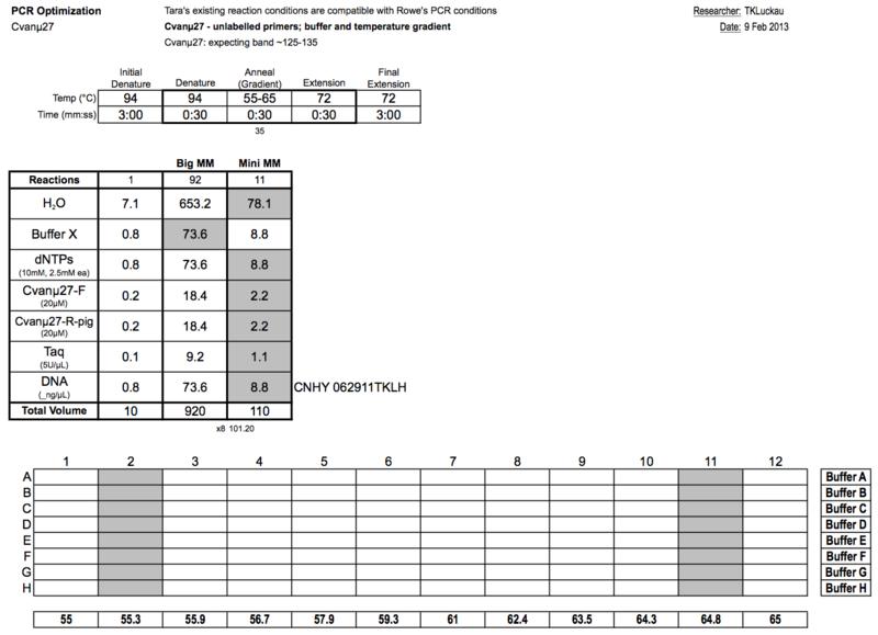 20130209 PCRc.png