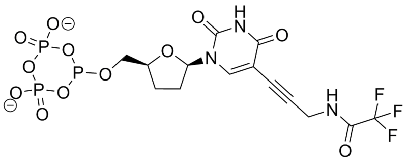 File:Biomod Aarhus Chem Hydro.png