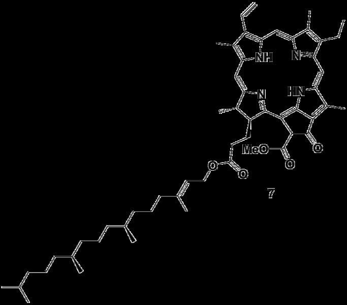 File:Biomod Aarhus Chem Photo7.png