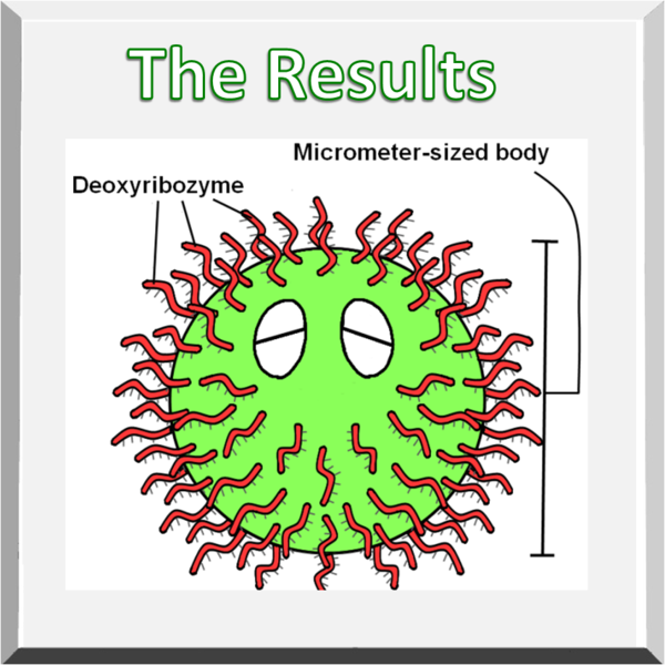 File:BIOMOD Tokyo20111031Result figure ciliate.png