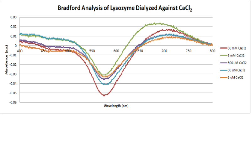 File:Bradford Analysis of CaCl2 Dialyed Lysozyme.png