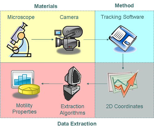 Approach to Motility Data Collection