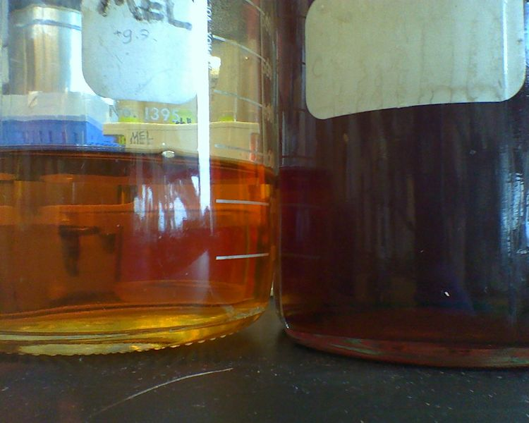File:Two different TB batches.jpg