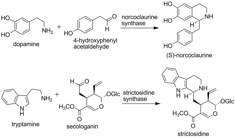 File:2007 Tanner Biochem.png