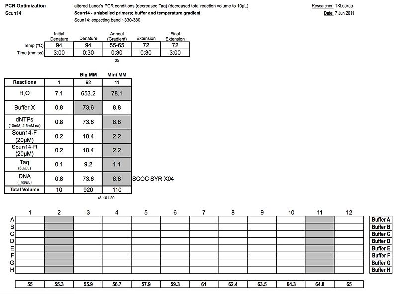 File:20110607 PCR 2.jpg