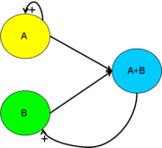 Figure 1. A block diagram of Predator-Prey Interactions with A being the prey and B being the predator.   Predator eating prey (modelled with A+B) leads to progeny of B, whilst A continuously reproduces exponentially.