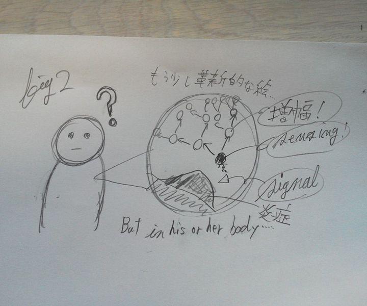 File:Sendai-pro-fig2-01.jpg