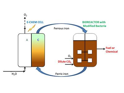 Process diagram of the electrofuels process.  In the electrochemical reactor, ferric iron is reduced to ferrous iron.  This is fed to the biochemical reactor where genetically modified iron-oxidizing cells (Acidithiobacillus ferrooxidans) are able to produce chemicals or fuels from CO2.  This process provides a means to convert renewable energy (such as solar) to liquid fuels and chemicals.