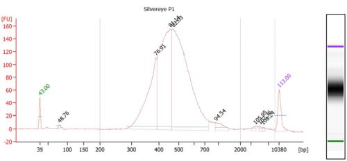 SEP1 Bioanalyzer.PNG