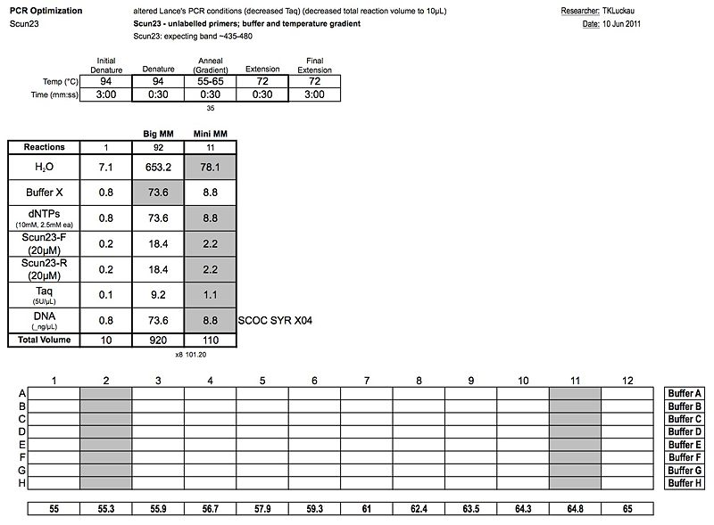 File:20110610 PCR.jpg