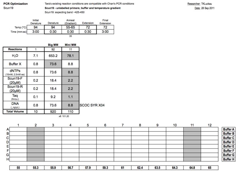 20110929 PCRa.png