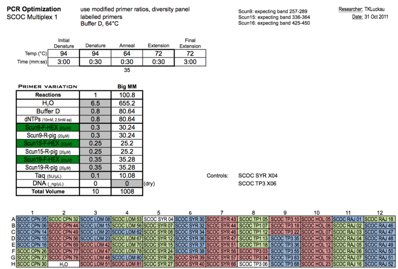 20111031 PCRb.png
