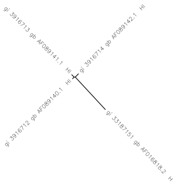 File:Sequence tree MiaHud.png