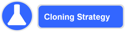 Cloning strategy logo.png