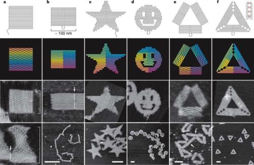 Fig. 1 DNA origami