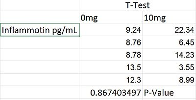 Rat study T-test