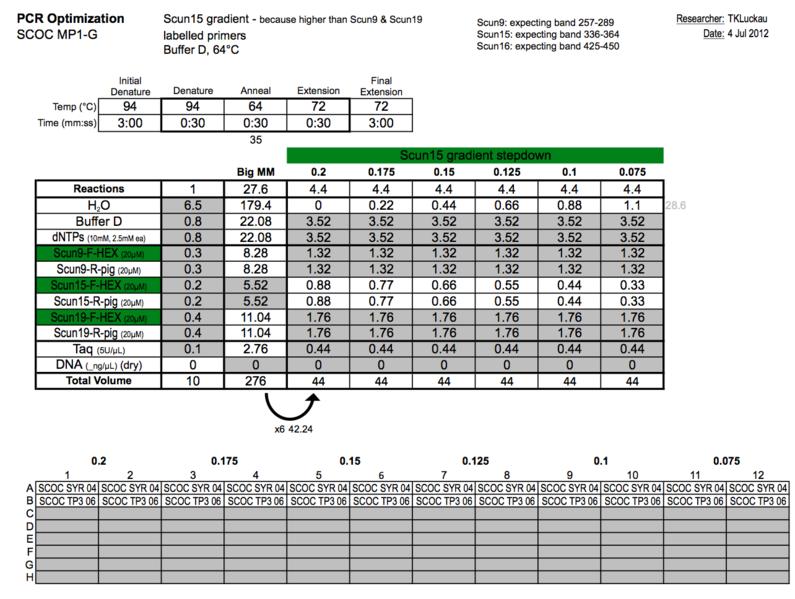 File:20120704 PCR.png