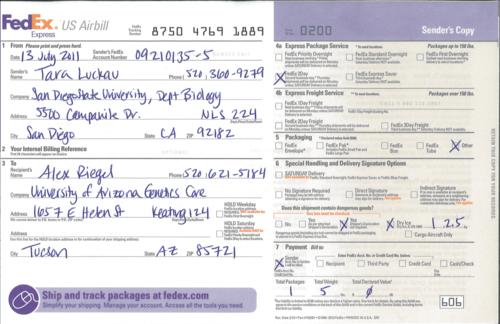 20110713 FedEx.png