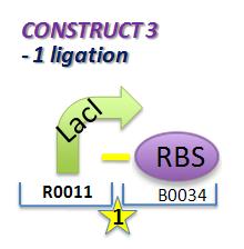 File:II09 ConstM1a.jpg