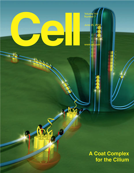 File:JinCell09Cover.jpg