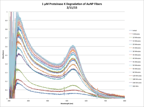 1µM ProtK Kinetics AbsvsTime Chart.png