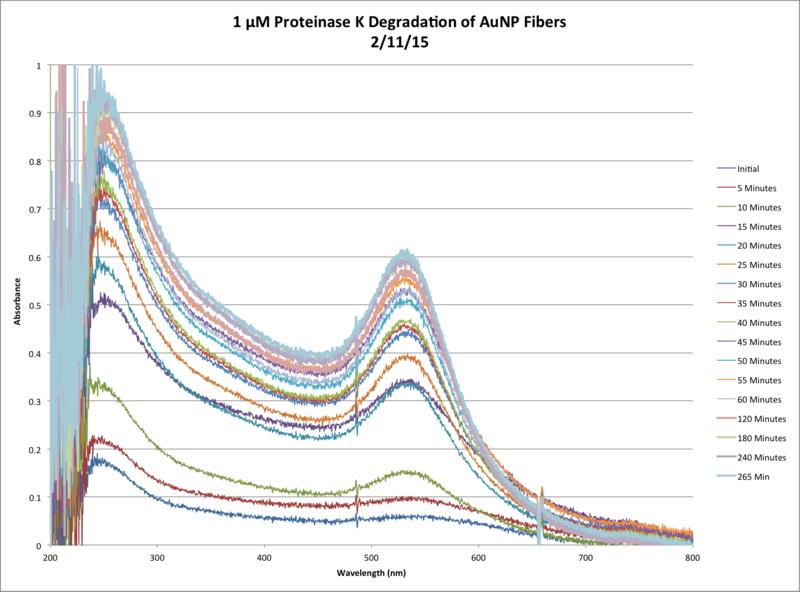 File:1µM ProtK Kinetics AbsvsTime Chart.png
