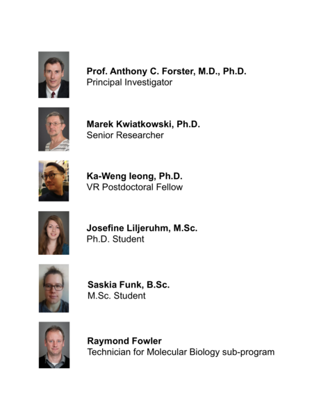 File:20170309 Forster lab members.png