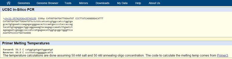 File:Gene stuff.JPG