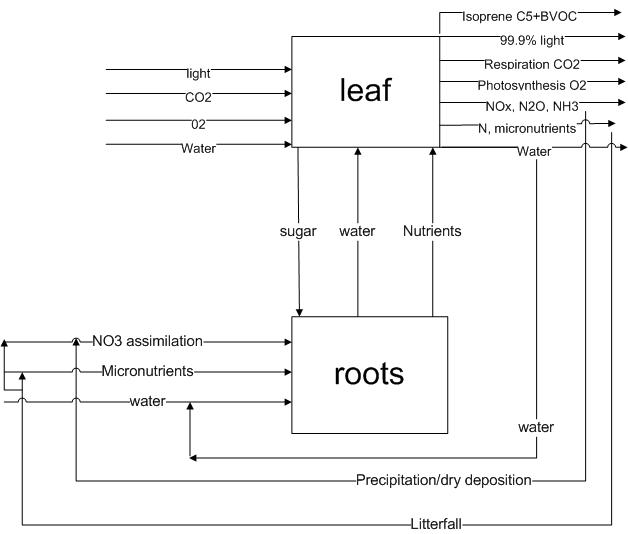 File:TreeLCA.bmp