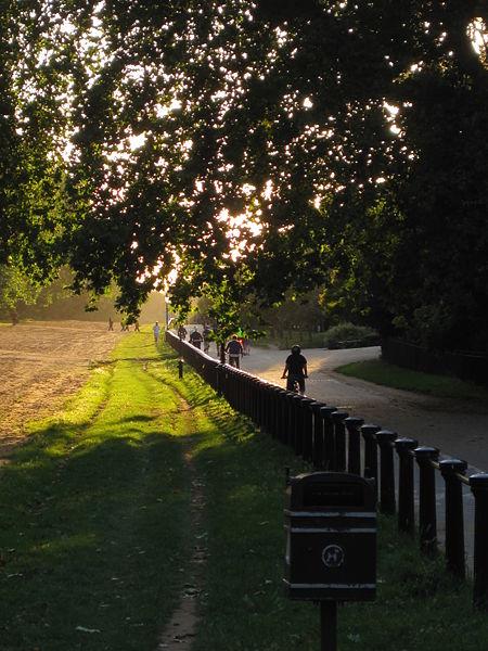 File:London Hyde Park.JPG