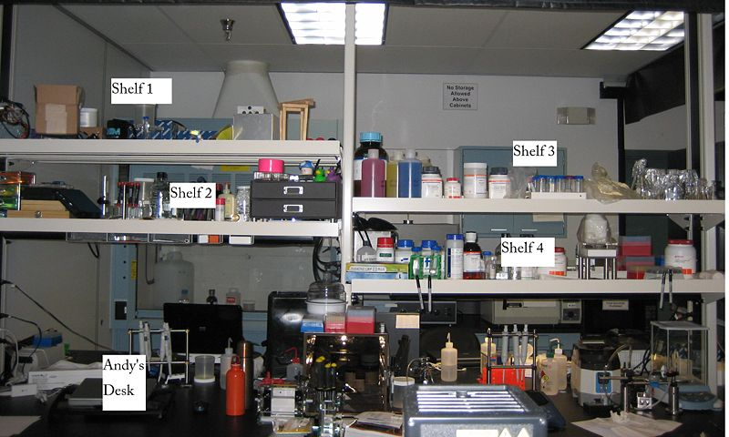 File:Wet Lab.JPG