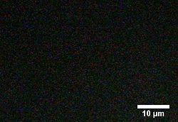 BIOMOD-TNJ-CrAu 3 2s.jpg