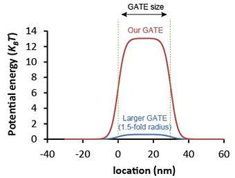 Potential graph.jpg
