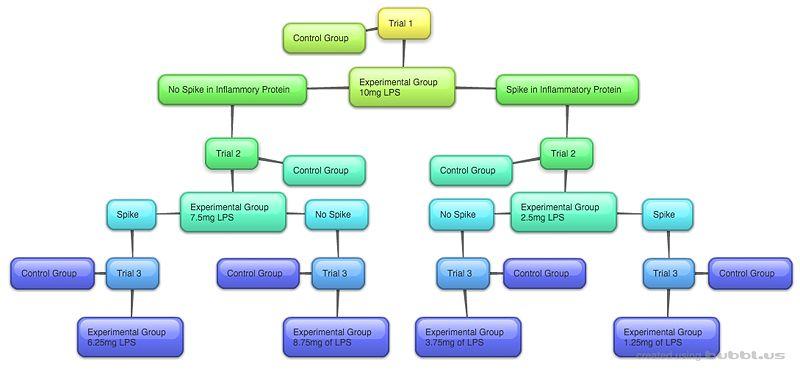 File:New-Mind-Map 5jcosBME100G12.jpg