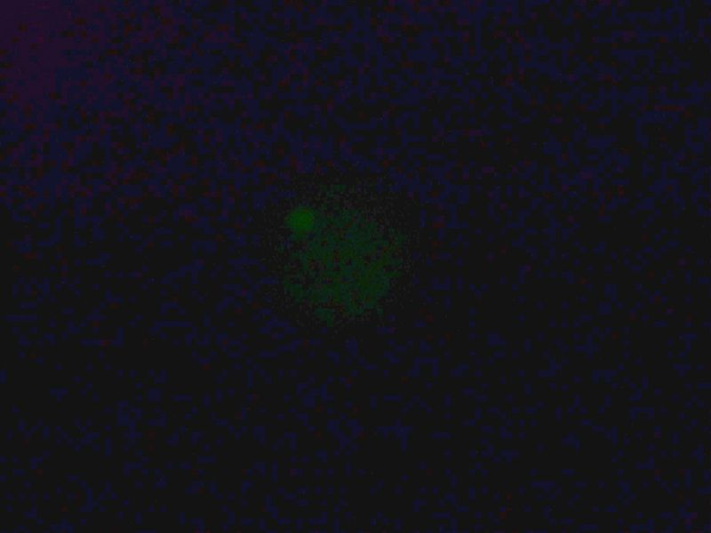 File:IC07 image114b.jpg