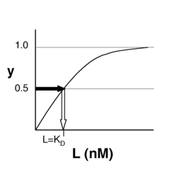Simple binding curve. The binding fraction y at first increases linearly as the starting ligand concentration is increased, then asymptotically approaches full saturation (y=1). The dissociation constant KD is equal to the ligand concentration [L] for which y = 1/2.