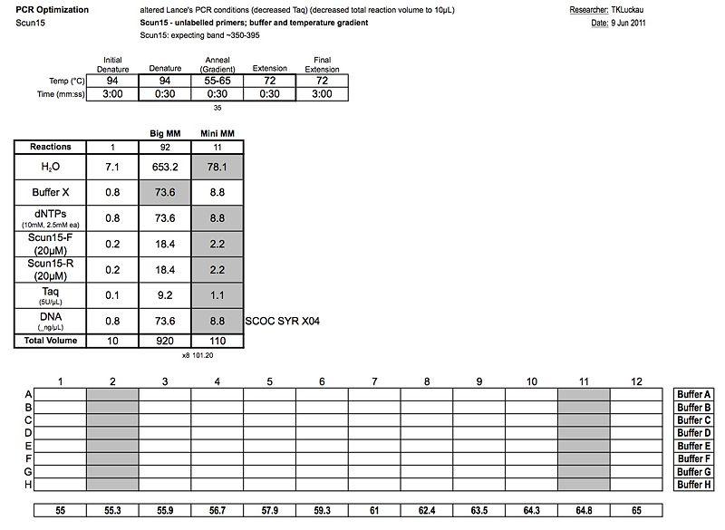 20110609 PCR.jpg