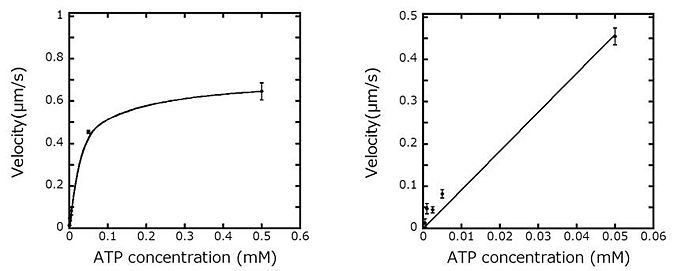 an experiment determining the effectiveness of different buffer solutions Factor in determining the effect of ph on activity, it is not the only one, and  this  relationship was observed in twenty-one original experiments, and also in some   the effect of ph is masked in other instances in which the individual cells of the  test  uptake of small pieces of carrot leaves infiltrated with buffer solutions.