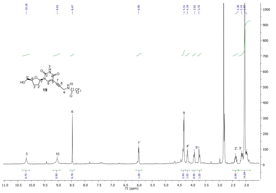 1H NMR of compound 19