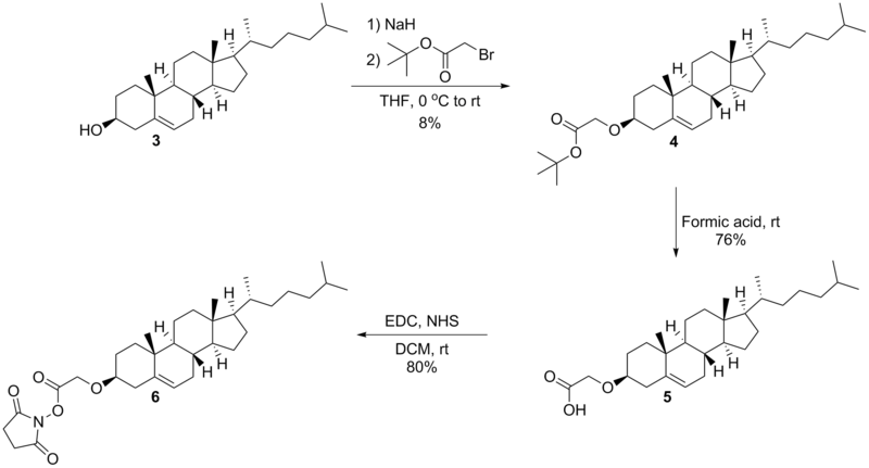 Scheme 4: Strategy for the synthesis of the activated cholesterol derivative 6.