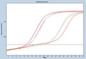 W/F section, Amp curves for CN II samples