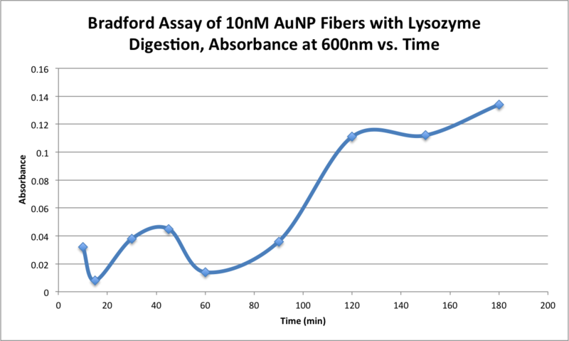 Image:AMS 10272015 Bradford Assay of 10nM AuNP Fibers with Lysozyme Digestion, Absorbance at 600nm vs. Time .png