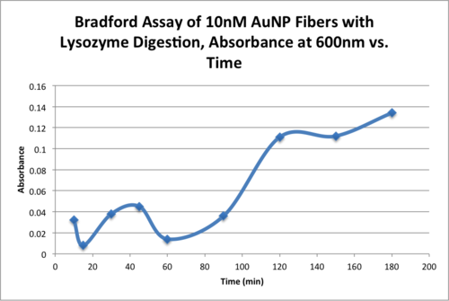 AMS Bradford Assay of 10nM AuNP Fibers with Lysozyme Digestion, Absorbance at 600nm vs. Time.png
