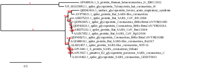 Horvath Phylogenetic Tree.png