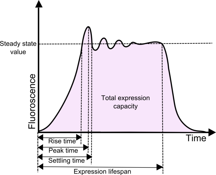File:ICGEMS Graph with steady state.png