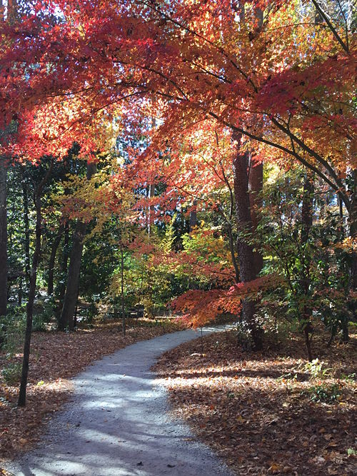 Durham Fall 2016.JPG