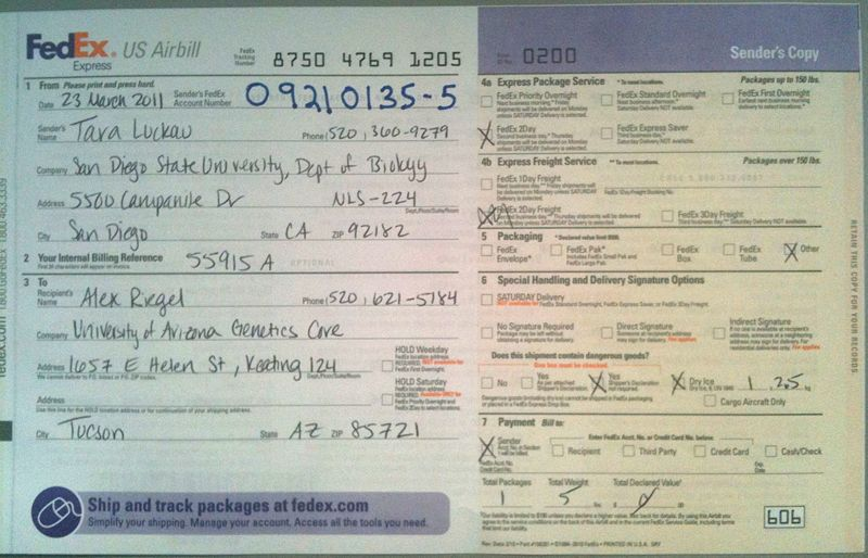 Image:FedEx Domestic Airbill TKL.jpg